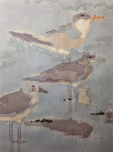 Martha Wolfe Sea Birds